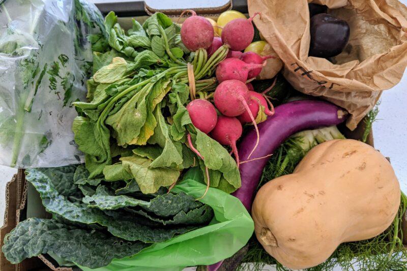 organic vege box